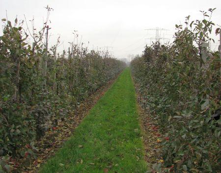 7_WS_Nutrientenkringloop Kromme Rijnstreek